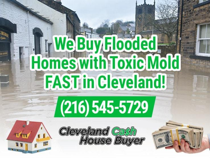 cleveland water damage and mold